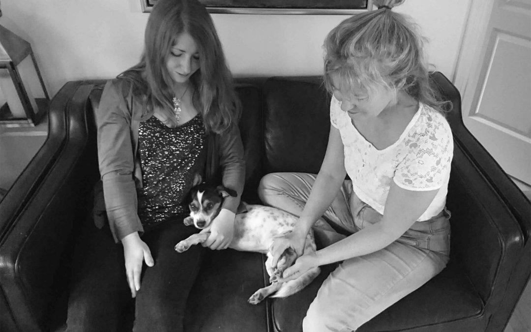 Min hund kan ikke være alene hjemme - hjælp!